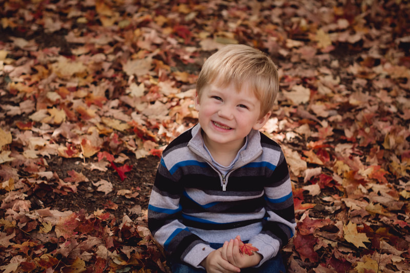 Young Boy in the leaves at Lakeside Park,Kitchener